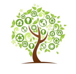 эко дерево